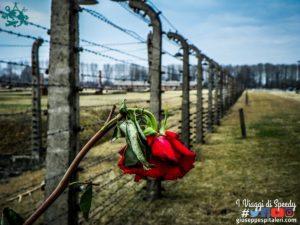 Il campo di concentramento di Birkenau (Polonia) – La fabbrica della morte