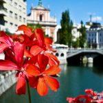 lubiana_sovenia_2011_www.giuseppespitaleri.com_025