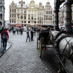 bruxelles_belgio_2014_www.giuseppespitaleri.com_030
