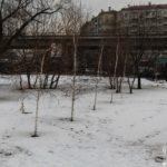 mosca_russia_2014_bis_www.giuseppespitaleri.com_001_046