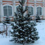 sanpietroburgo_russia_2014_bis_www.giuseppespitaleri.com_048