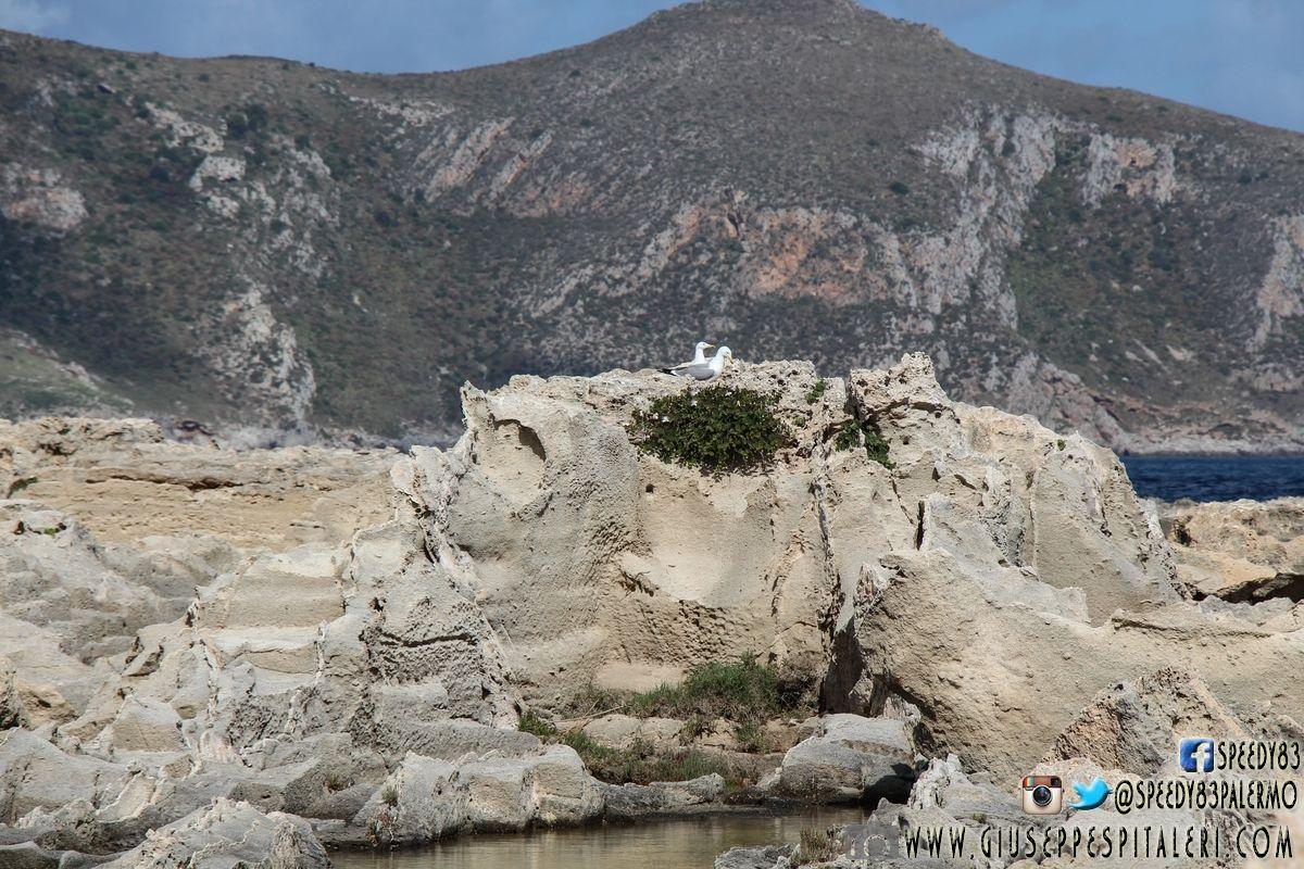 isola_favignana_trapani_www.giuseppespitaleri.com_128