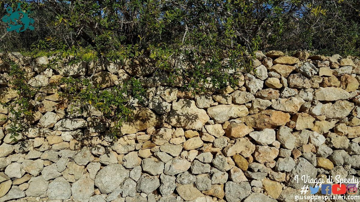 isola_gozo_malta_2016_www-giuseppespitaleri-com_052
