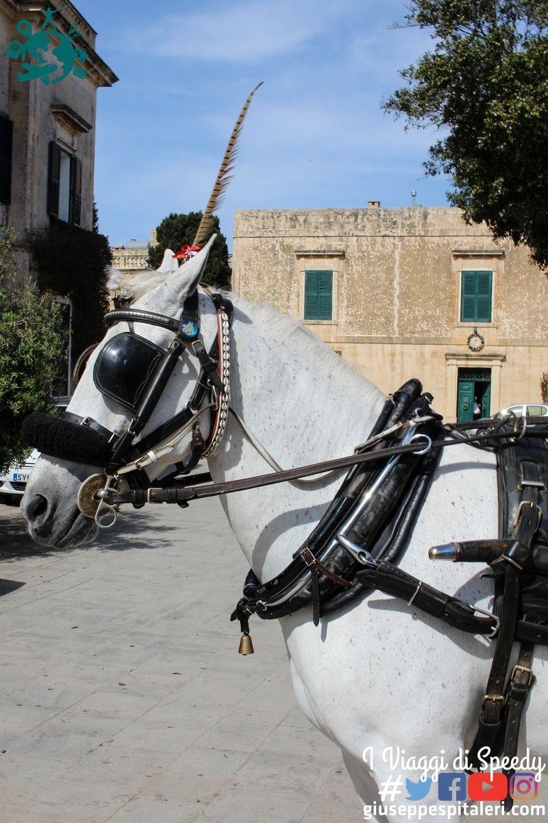 isola_malta_2015_www-giuseppespitaleri-com_011