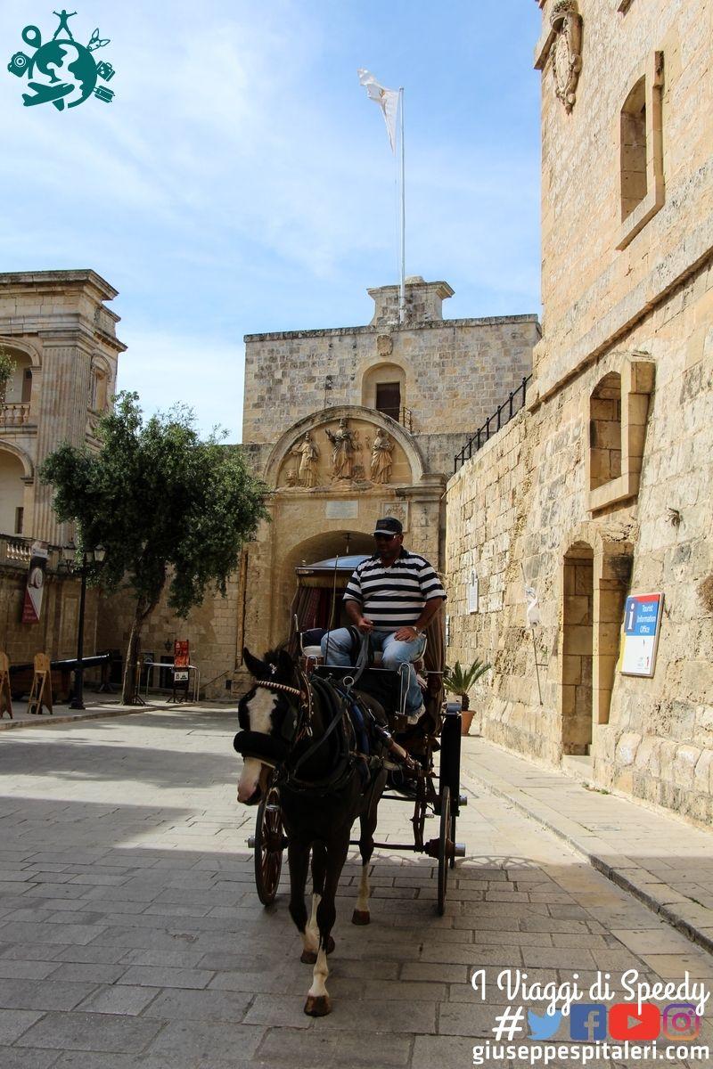 isola_malta_2015_www-giuseppespitaleri-com_020