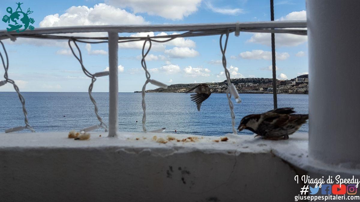 isola_malta_2016_www-giuseppespitaleri-com_009