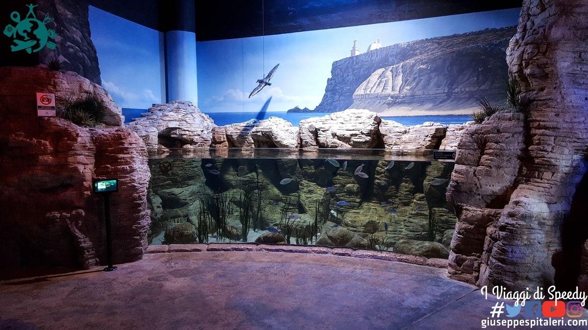 isola_malta_2016_www-giuseppespitaleri-com_078