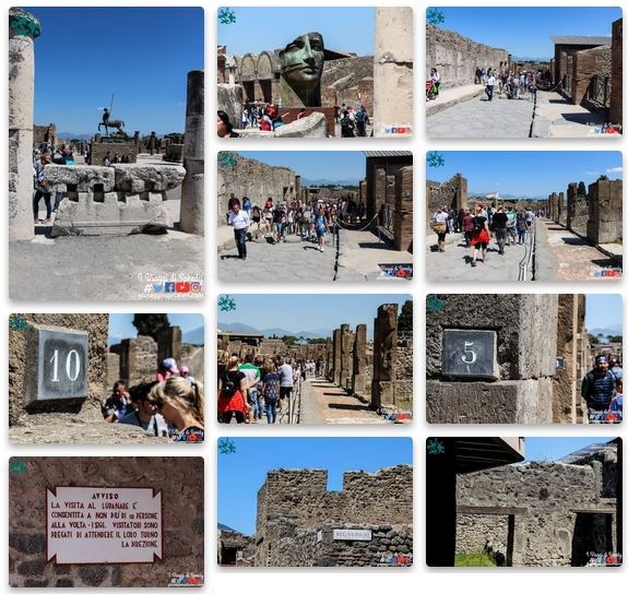 """Book fotografico completo """"Norwegian Cruise Line - escursione sul a Pompei:"""""""