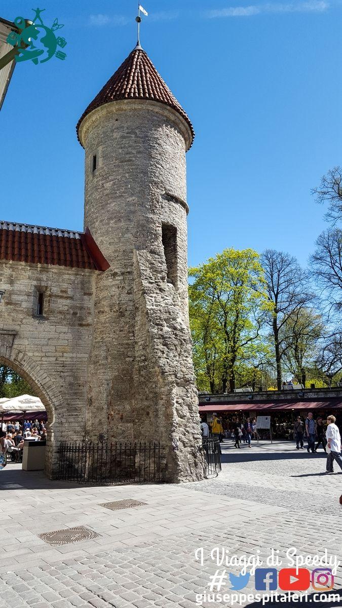 tallinn_estonia_www.giuseppespitaleri.com_140
