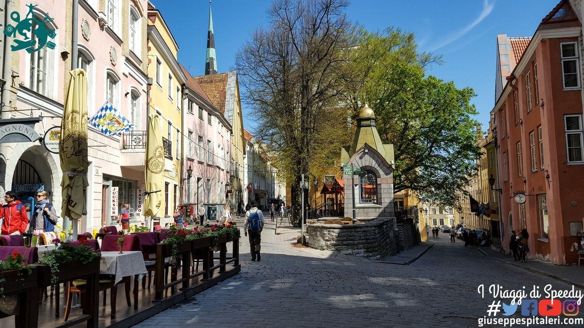 tallinn_estonia_www.giuseppespitaleri.com_60