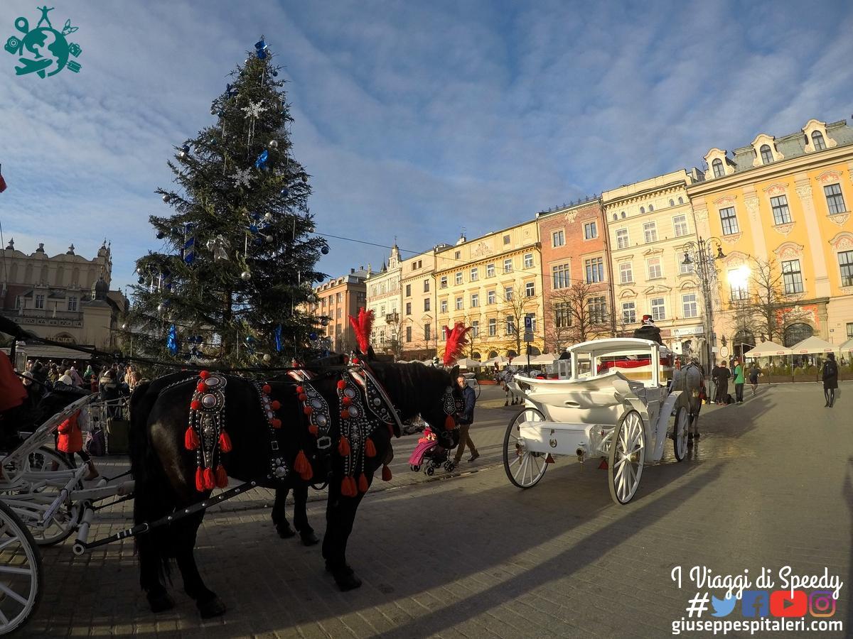 cracovia_2017_polonia_giuseppespitaleri.com_088