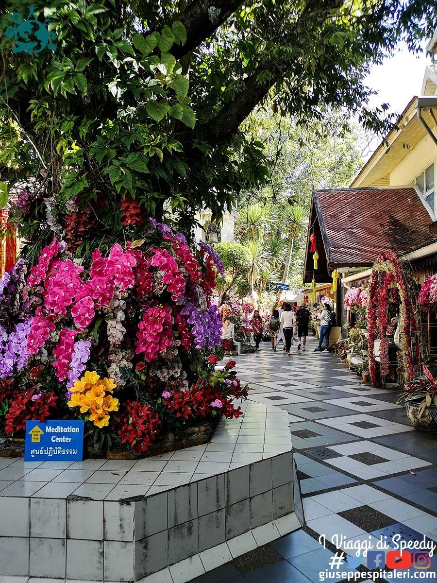 chiang_mai_thailandia_www.giuseppespitaleri.com_046