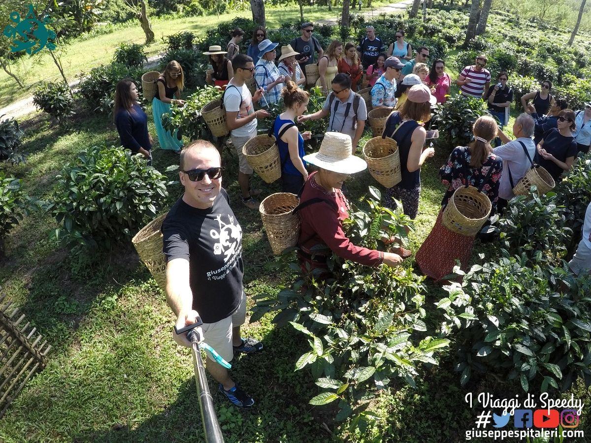 chiang_mai_thailandia_www.giuseppespitaleri.com_102
