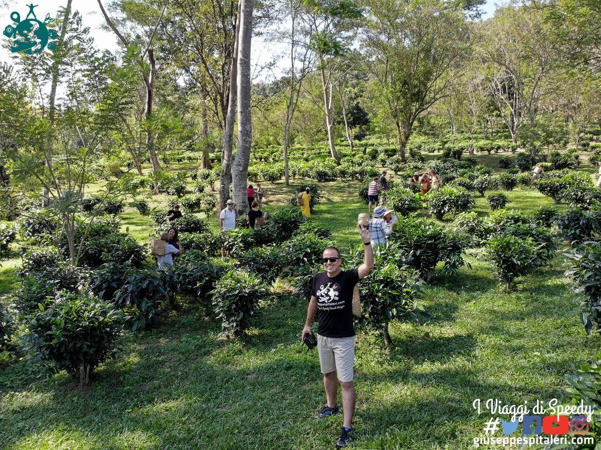 chiang_mai_thailandia_www.giuseppespitaleri.com_106