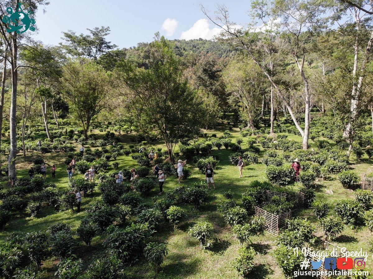chiang_mai_thailandia_www.giuseppespitaleri.com_110