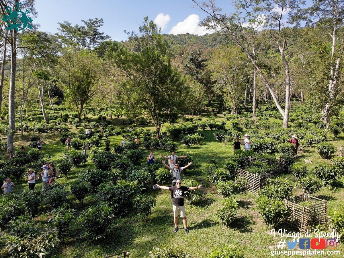 chiang_mai_thailandia_www.giuseppespitaleri.com_111