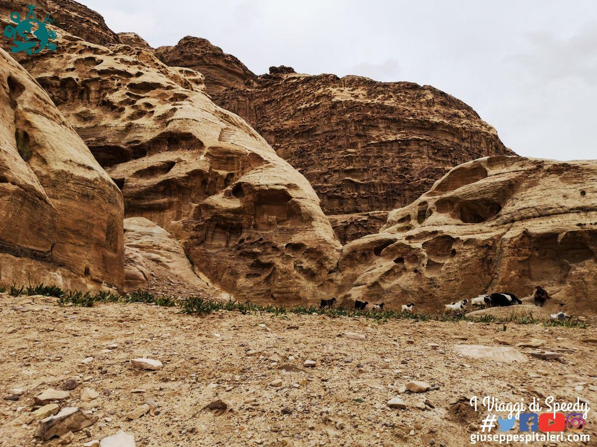 giordania_petra_www.giuseppespitaleri.com_157
