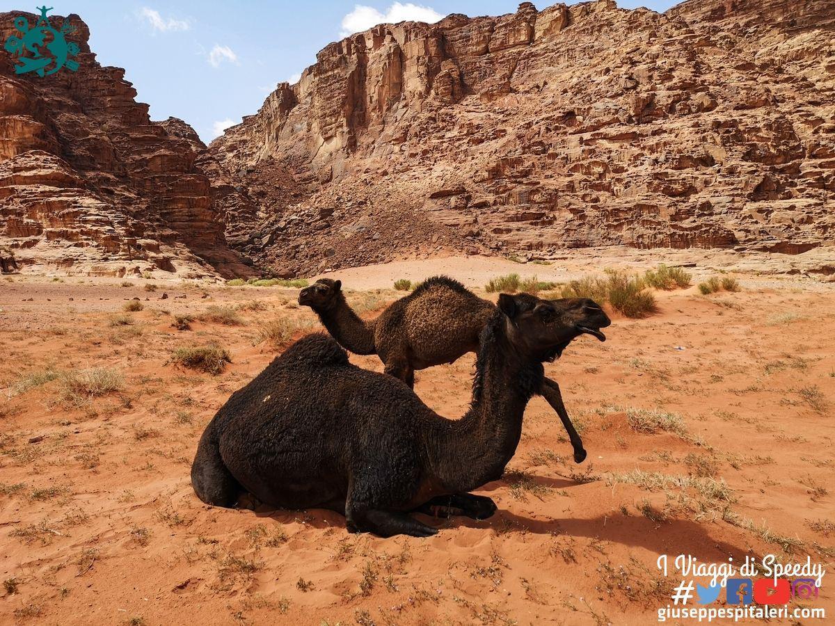 giordania_wadi_rum_www.giuseppespitaleri.com_107