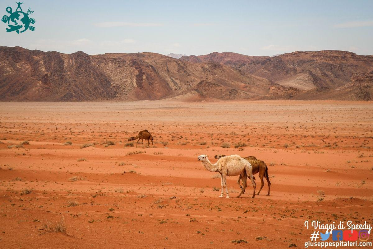 giordania_wadi_rum_www.giuseppespitaleri.com_120