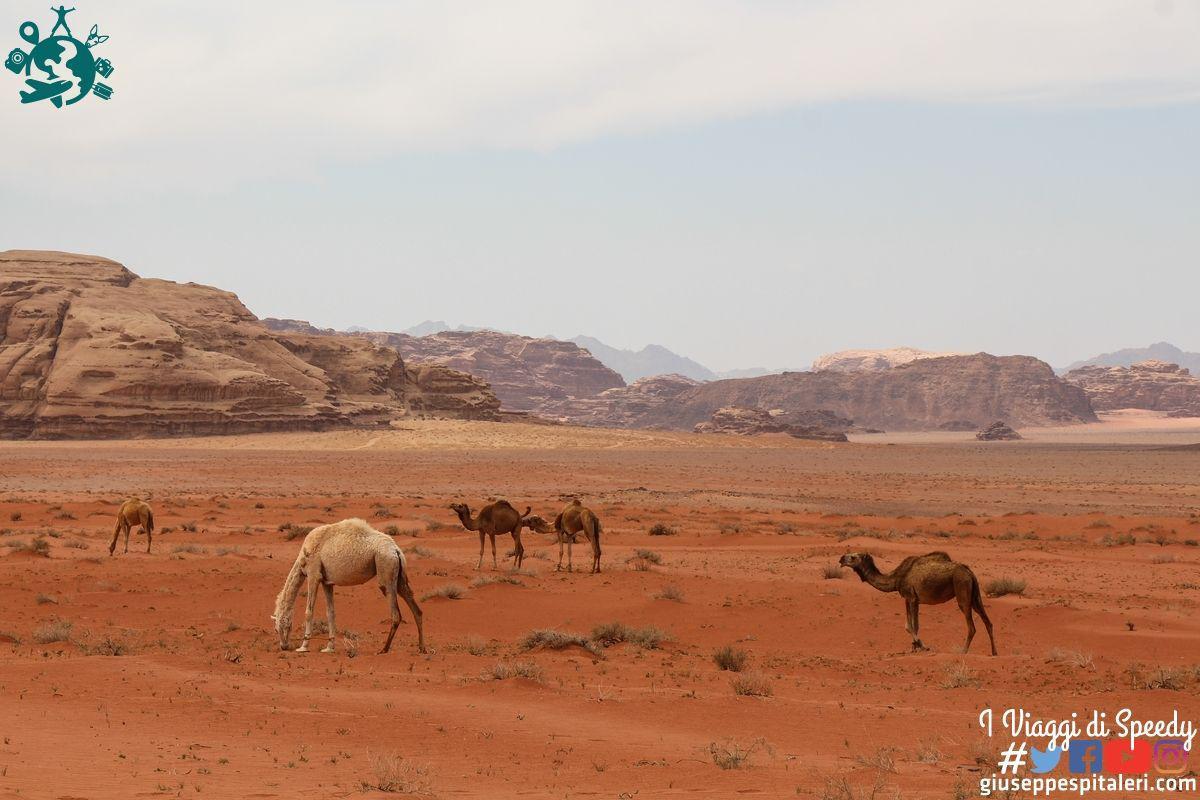 giordania_wadi_rum_www.giuseppespitaleri.com_124