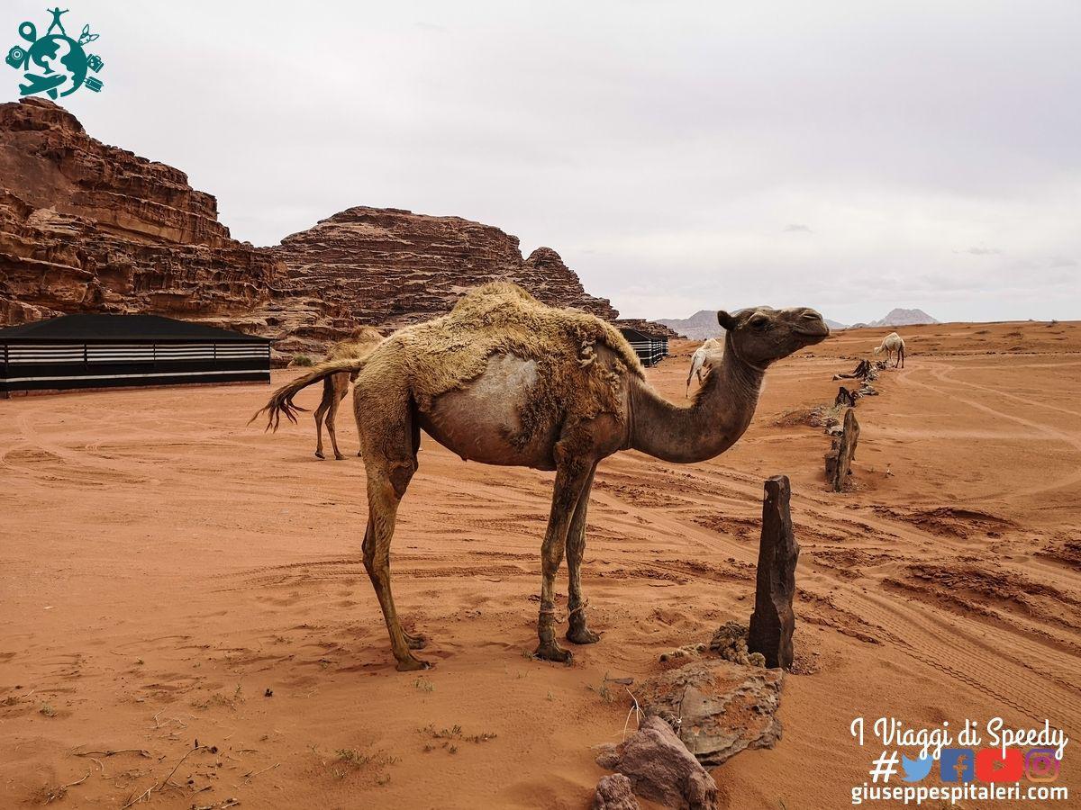 giordania_wadi_rum_www.giuseppespitaleri.com_145