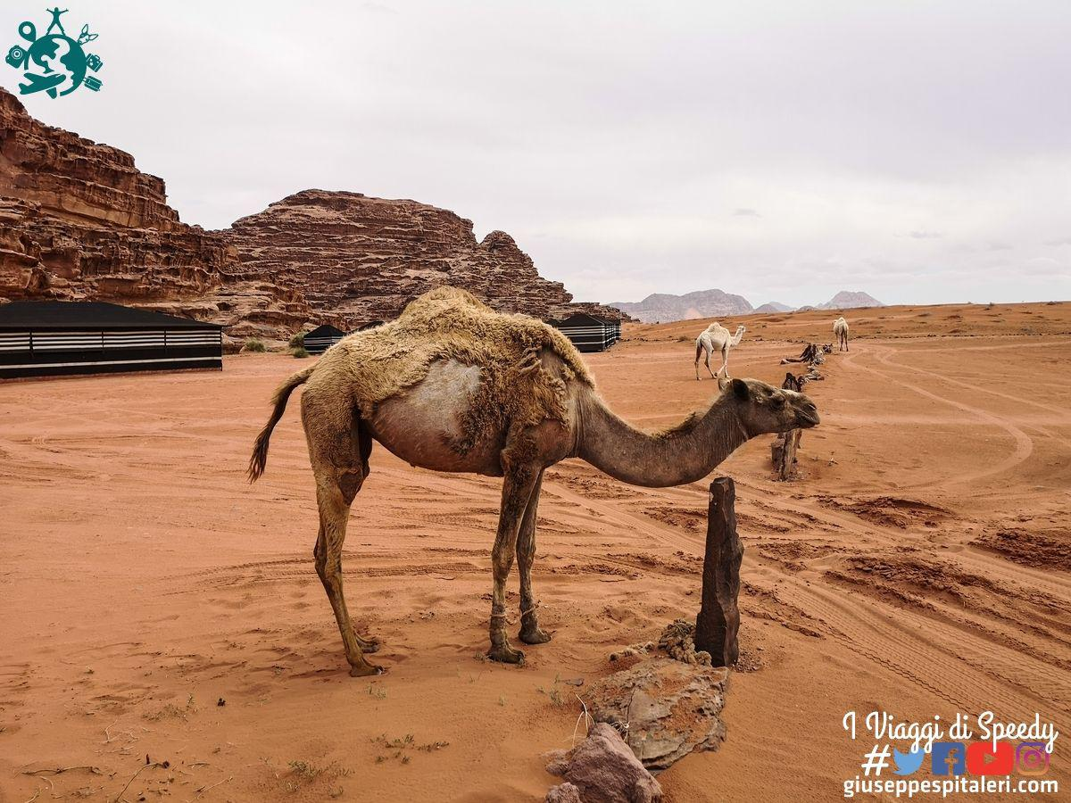giordania_wadi_rum_www.giuseppespitaleri.com_146