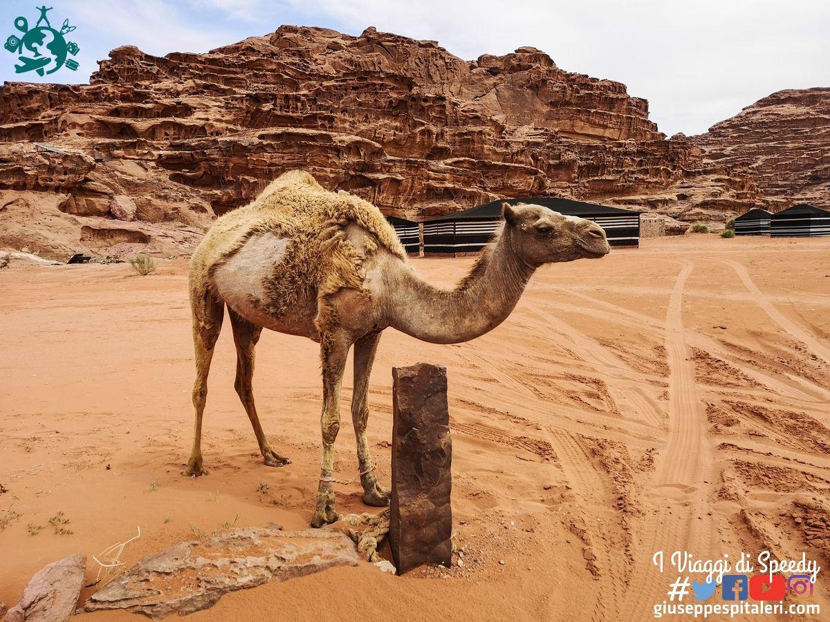 giordania_wadi_rum_www.giuseppespitaleri.com_147