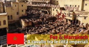Fes e Marrakech: a cavallo tra le città imperiali del Marocco