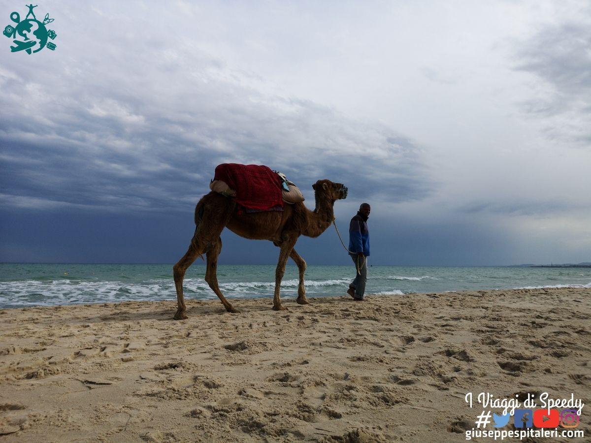 hammamet_tunisia_les_orangers_www.giuseppespitaleri.com_053