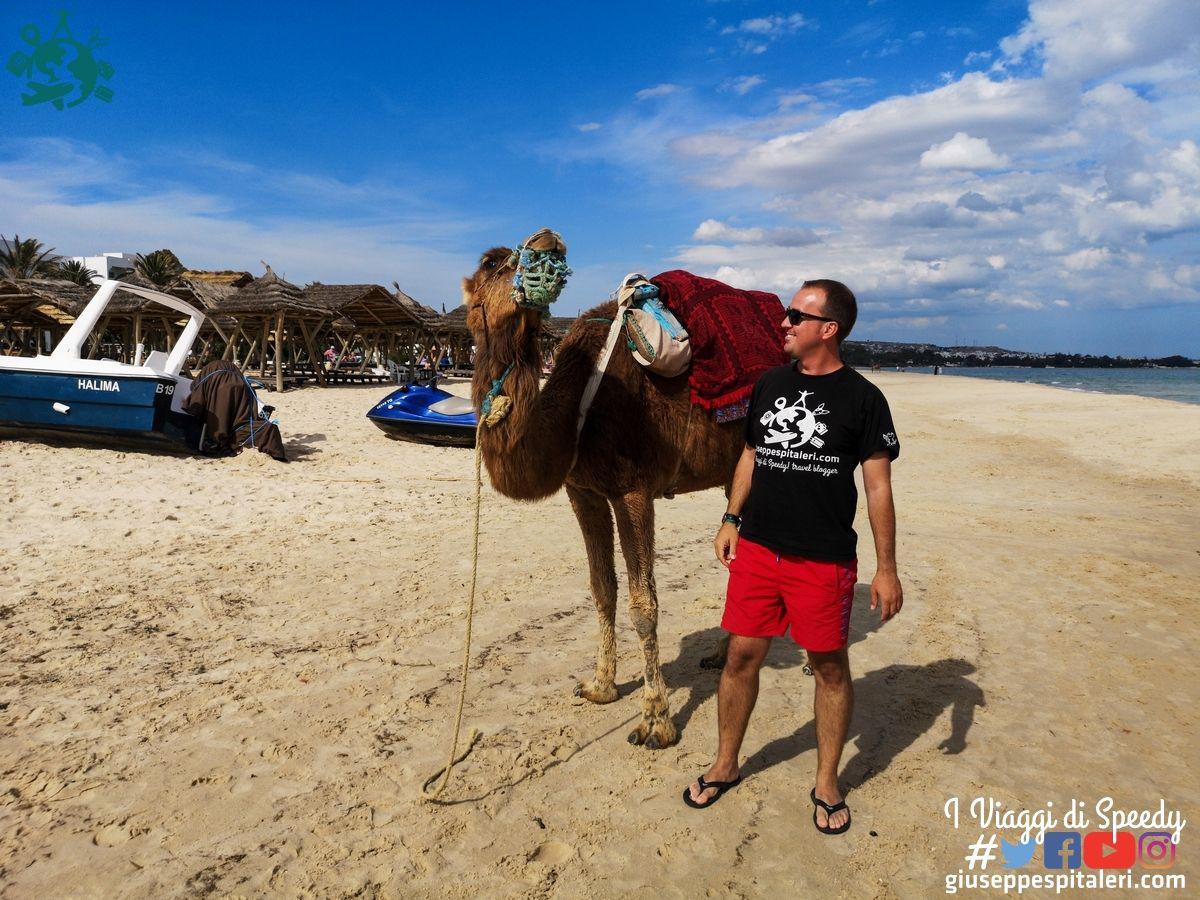 hammamet_tunisia_les_orangers_www.giuseppespitaleri.com_088