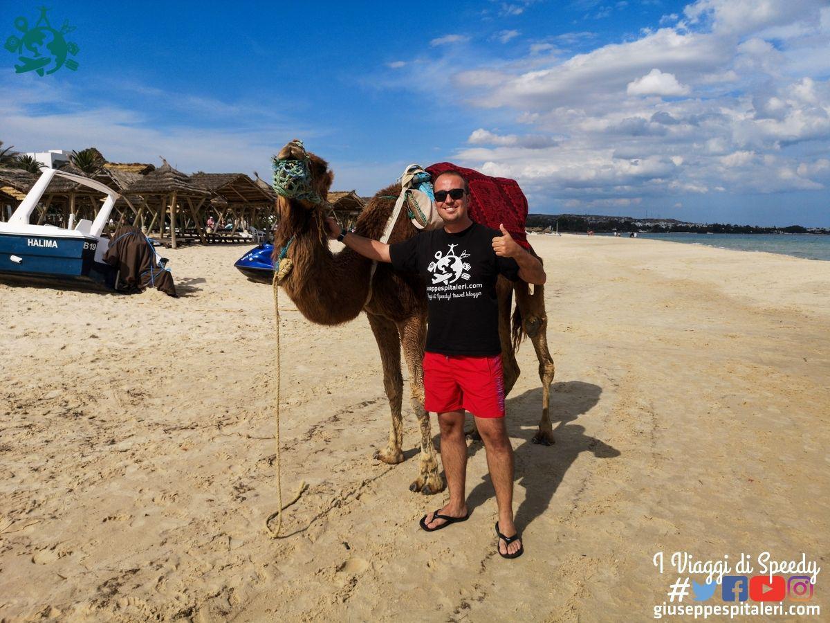 hammamet_tunisia_les_orangers_www.giuseppespitaleri.com_090