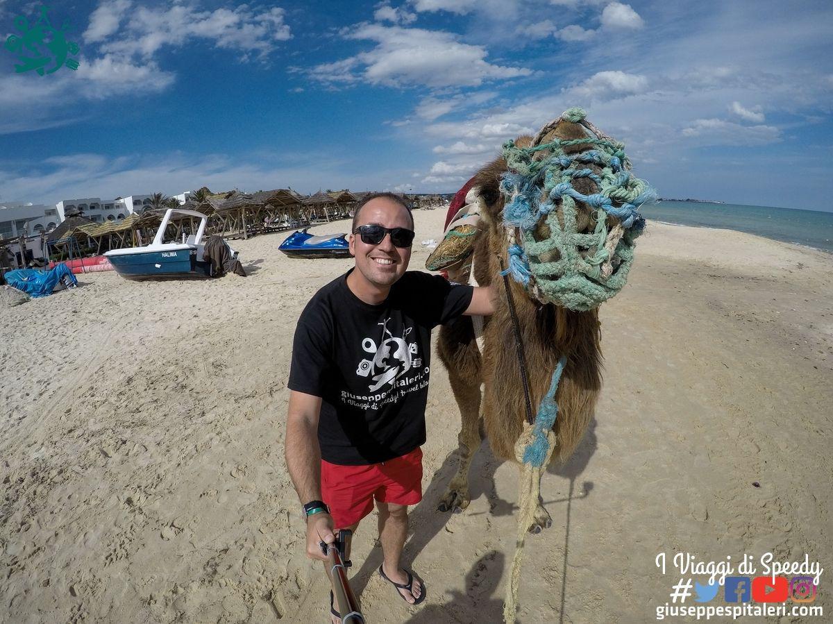 hammamet_tunisia_les_orangers_www.giuseppespitaleri.com_091