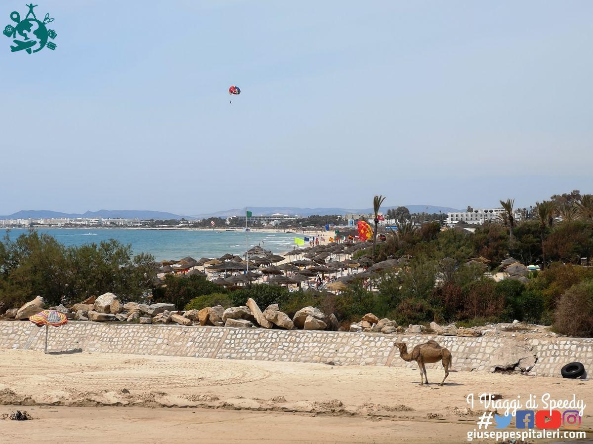 hammamet_tunisia_les_orangers_www.giuseppespitaleri.com_116