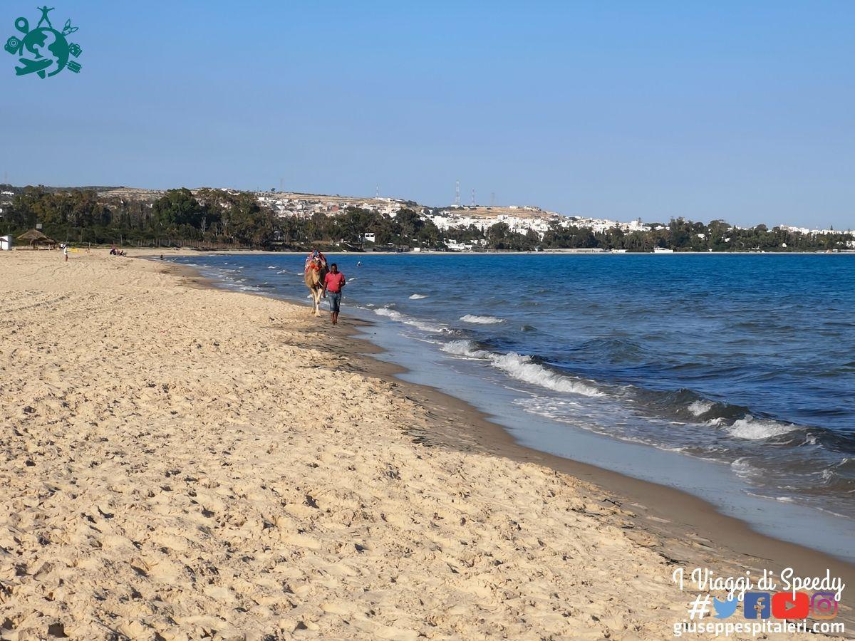 hammamet_tunisia_lti_les_orangers_www.giuseppespitaleri.com_132