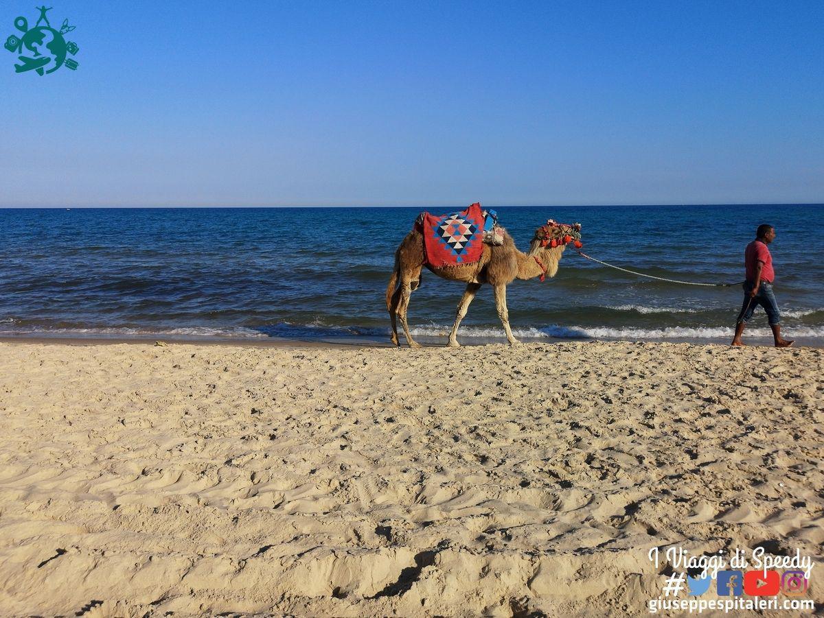 hammamet_tunisia_lti_les_orangers_www.giuseppespitaleri.com_148