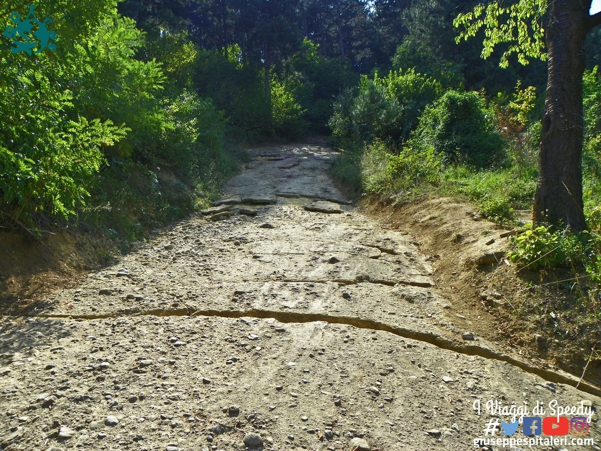 visoko_bosnia_2011_bis_www.giuseppespitaleri.com_041
