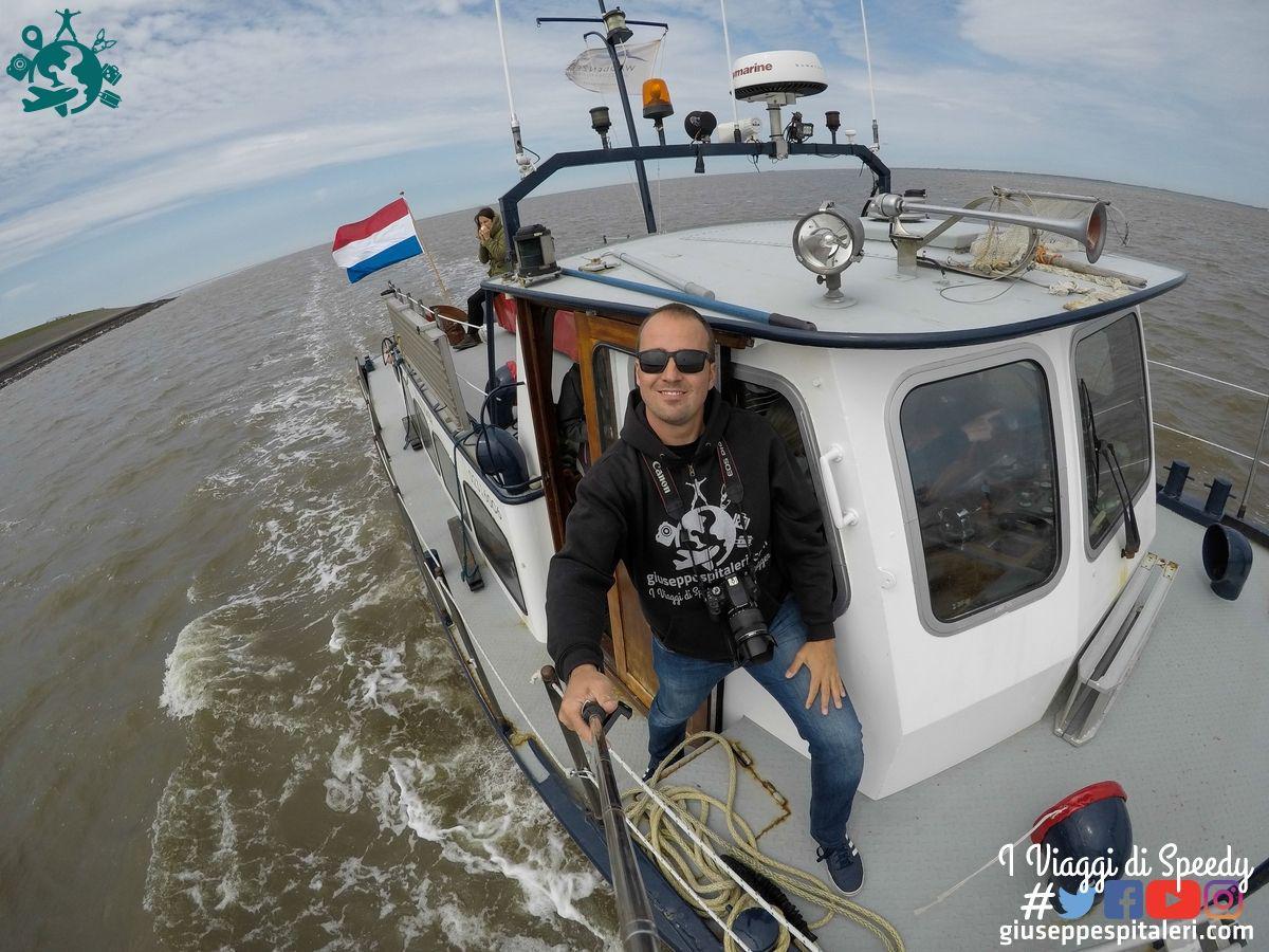 rotterdam_2019_Wadden_olanda_www.giuseppespitaleri.com_013