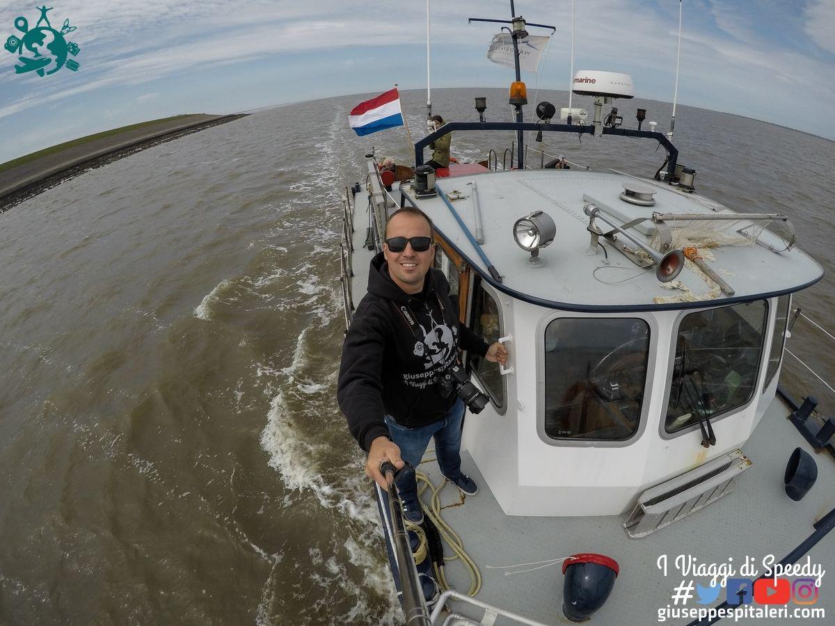 rotterdam_2019_Wadden_olanda_www.giuseppespitaleri.com_014