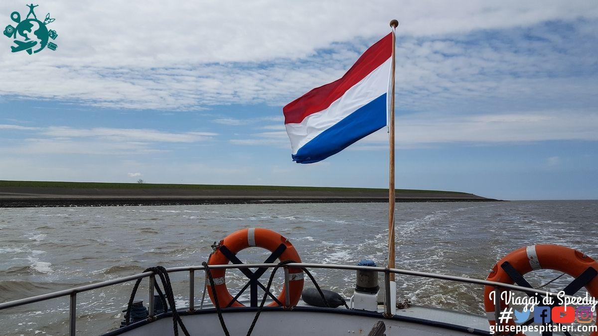 rotterdam_2019_Wadden_olanda_www.giuseppespitaleri.com_016