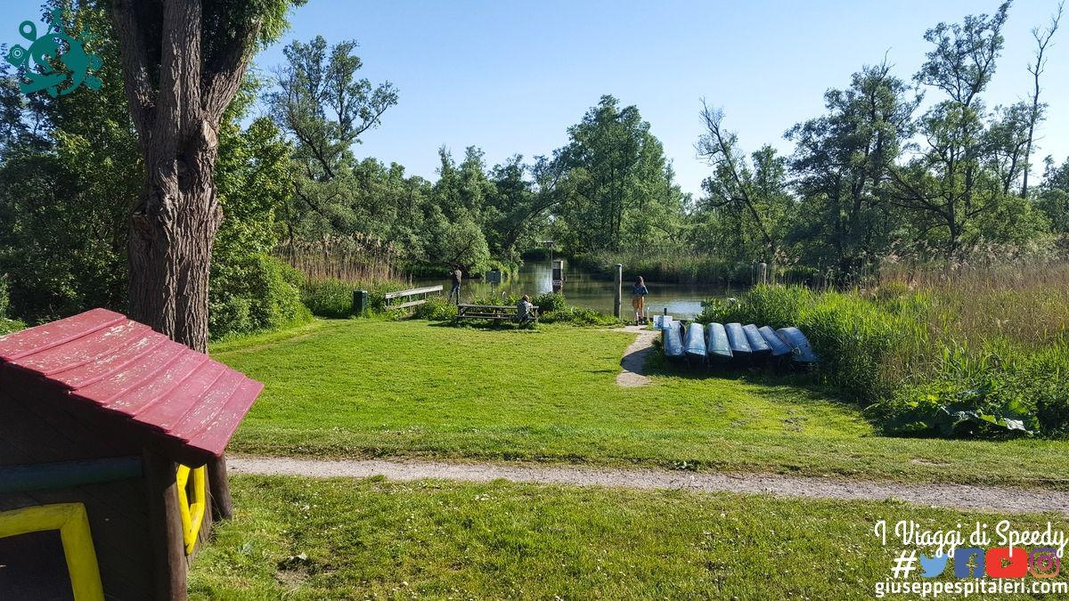 rotterdam_2019_biesbosch_park_olanda_www.giuseppespitaleri.com_001