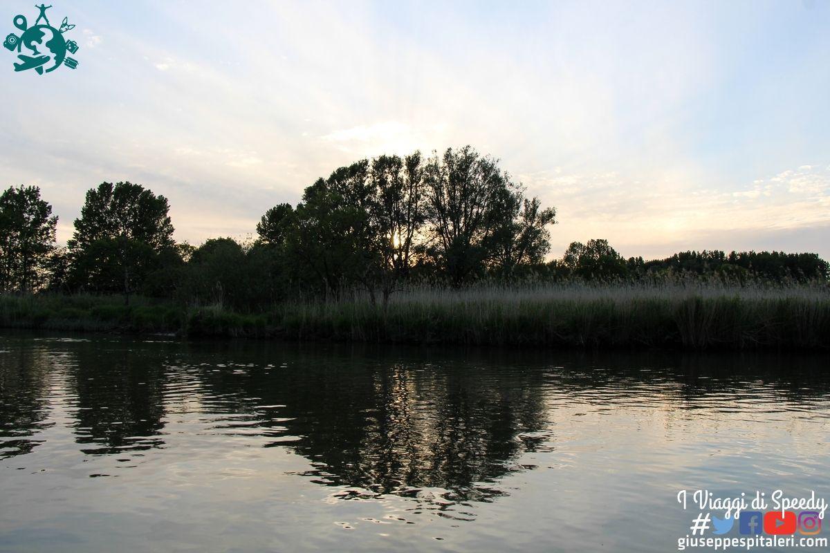 rotterdam_2019_biesbosch_park_olanda_www.giuseppespitaleri.com_007