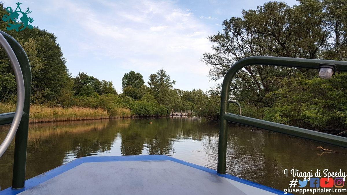 rotterdam_2019_biesbosch_park_olanda_www.giuseppespitaleri.com_015