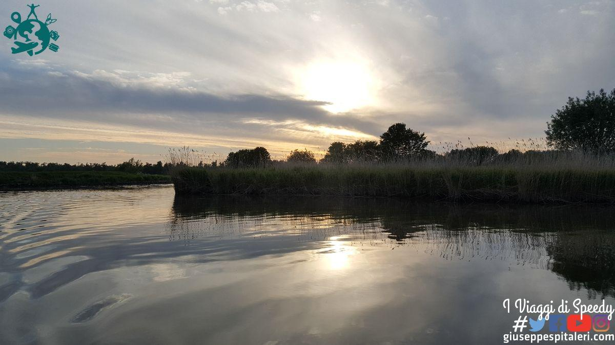 rotterdam_2019_biesbosch_park_olanda_www.giuseppespitaleri.com_017