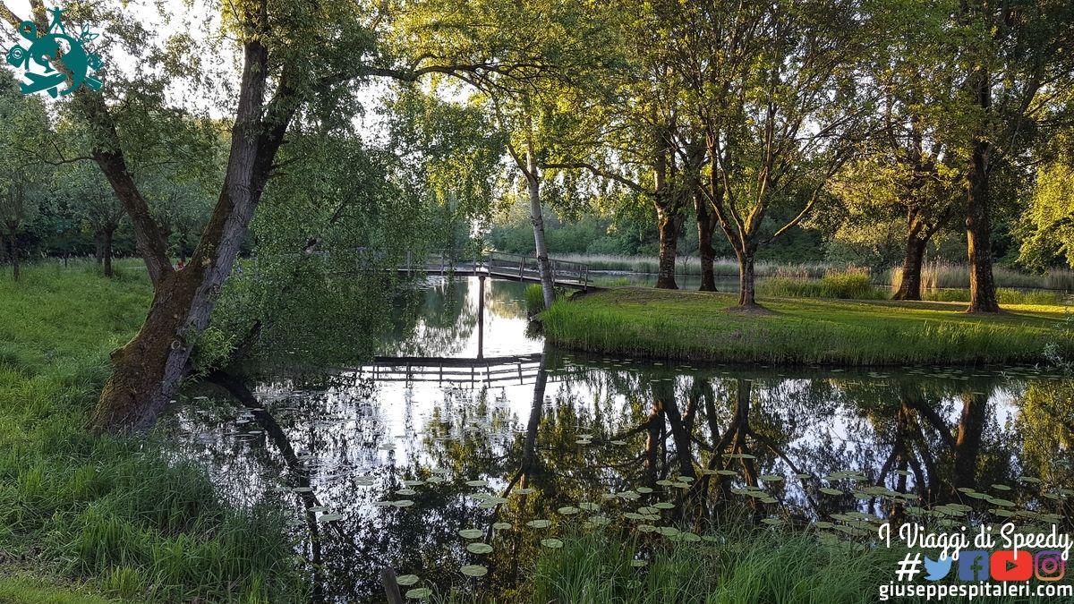 rotterdam_2019_biesbosch_park_olanda_www.giuseppespitaleri.com_065