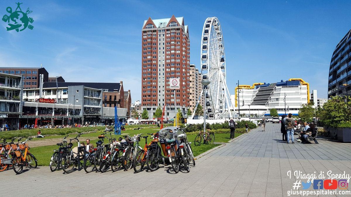 rotterdam_2019_olanda_www.giuseppespitaleri.com_023