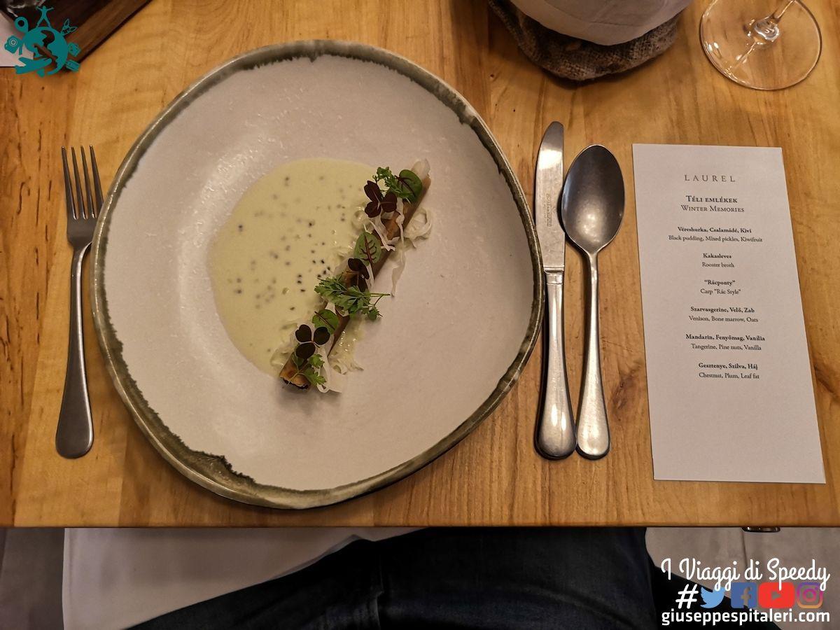 ungheria_budapest_ristorante_laurel_www.giuseppespitaleri.com_017
